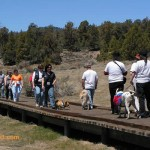 "Dogs, too, walked the Alpine Pedal Path in support of the National MS Society on the 5th annual walk last April. ""Top Dog"" Lilly Knapik raised $200 in pledges to contribute to the over $380,000 the Big Bear community has raised in the first five years of MS walks."