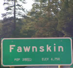 May 1 Signals the Return of First Fridays in Fawnskin