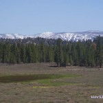 Historic Holcomb Valley, near Big Bear
