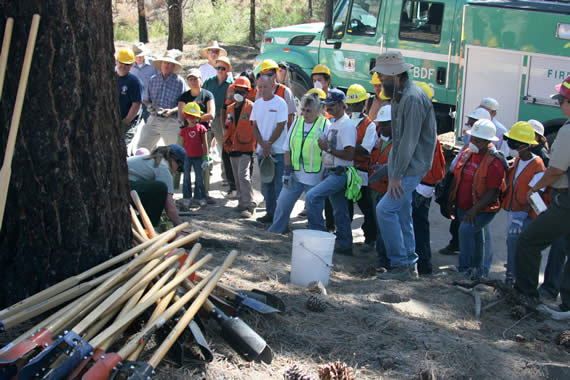 The 100+ volunteers who participated in the September 26 restoration day also worked along a dozer line created for the Butler Fire, replanting the area near Big Pine Flats Campground, after getting their morning training.