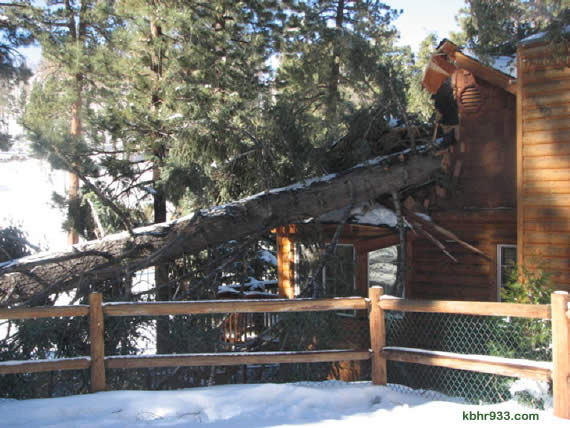 Last night's winds, with gusts up to 35 miles per hour, are likely the cause of this downed tree, which damaged a home on Cherry Lane in Big Bear Lake. No one was home at the time of the incident. (Photo courtesy Jennifer Frazee)