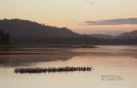 pelican-92016-bb-lake