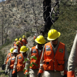 Southern California Mountains Foundation Seeking Young Adult Applicants for Americorps