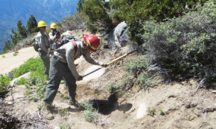 SoCal Mountains Foundation Recruiting for AmeriCorps Service Crews