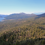 Human Remains Found on Cougar Crest Trail