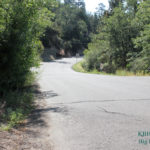 Fatal Collision Involving a Vehicle and a Bicyclist