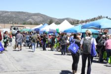 BVES and BBLDWP Host 2019 Earth Day Expo