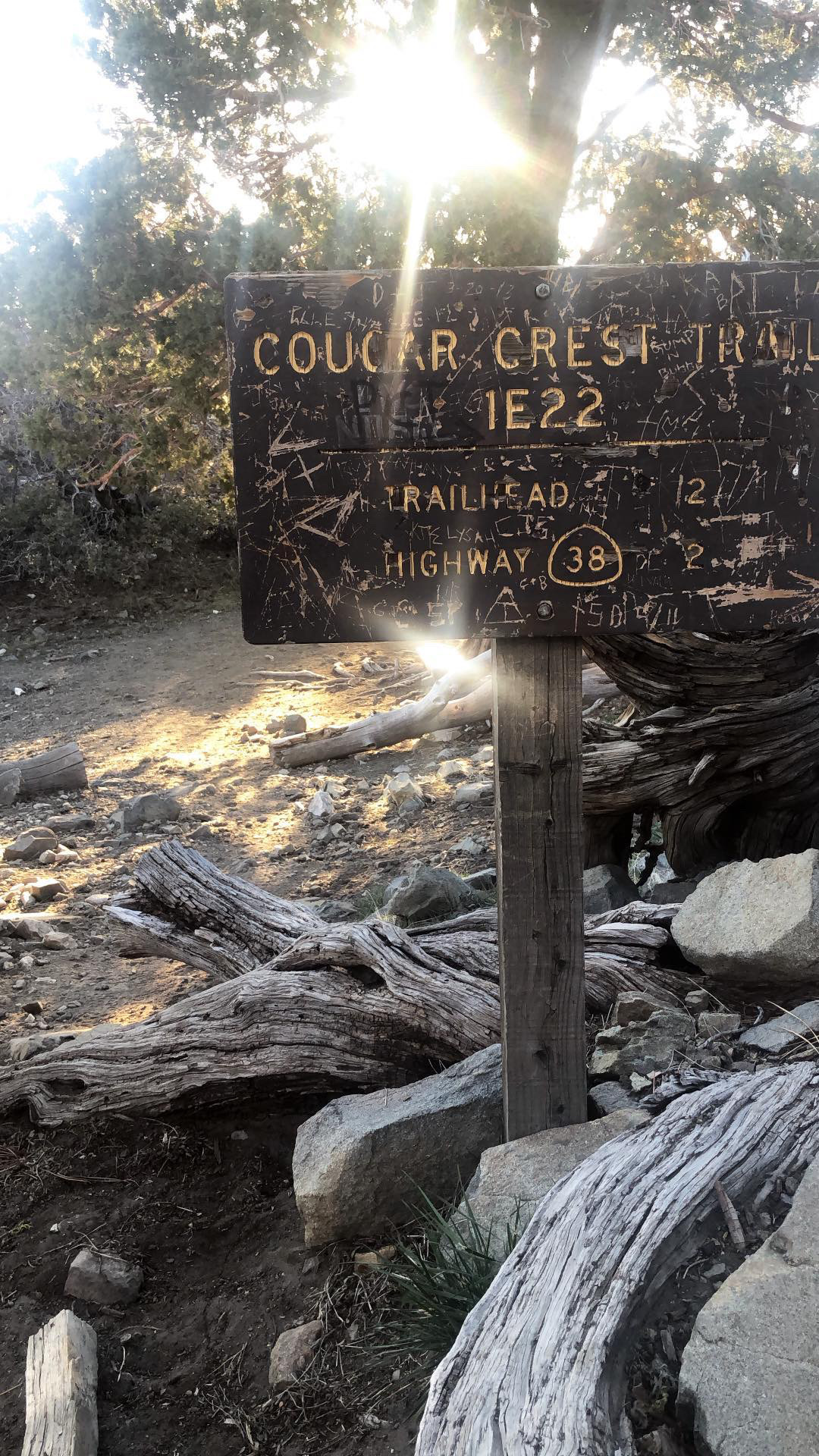 Bodies Found On Cougar Crest Trail