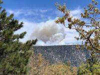 Prescribed Burning in Big Bear