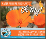Water and Fire and Plants, Oh My!