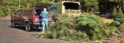 City Offering Free Vegetative Debris Chipping and Collection Program to Promote Fire Safety