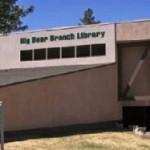 Dinosaur Themed Reading Program at the Library