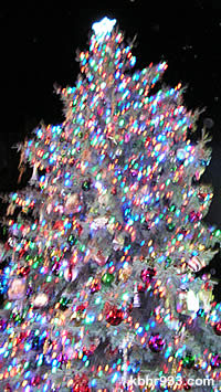 The Christmas tree in the Village of Big Bear Lake
