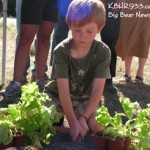 Community Gardens to Green Thumbs
