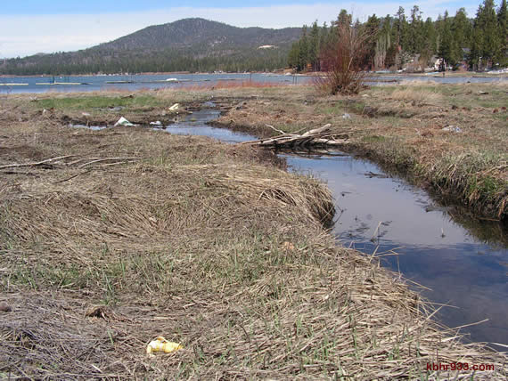 We can take care of our Earth, starting with picking up trash so that it doesn't run down streets and tributaries to Big Bear Lake.