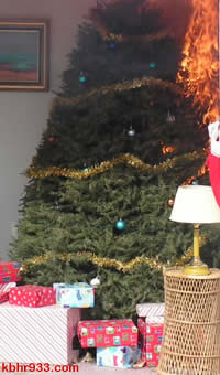 Christmas trees can be explosive, as they burn quickly--so keep these trees and limbs out of the fireplace.