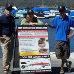 Diligence of Marina Inspector Keeps Big Bear Lake Quagga Mussel Free; All Boats Must Be Clean, Drained and Dry Before Launch