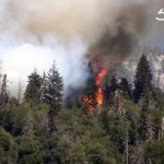 Momyer Fire Near Forest Falls Partially Contained