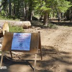 Forest Service Conducts South Big Bear Fuels Reduction Project