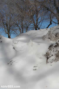 Overnight snowfall was just enough to brighten long-standing snow berms.