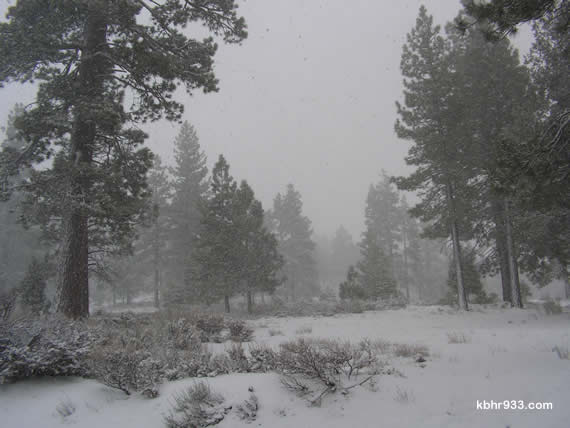 From Friday's sunny skies for the Amgen Tour to Sunday's white-out, the contrast was extreme here in the Big Bear Valley. Our first snowfall of the extended winter season was on Friday, November 13.
