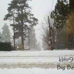 Snowy-day-December-1-2011