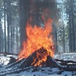 Winter Prescribed Burns to Begin Today in Big Bear