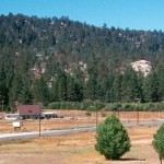 Land Trust Saves Big Bear's Best Meadowland