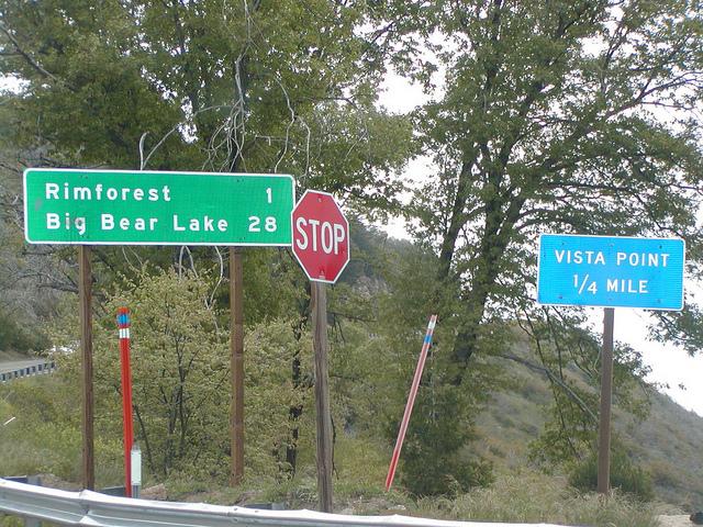 rimforest