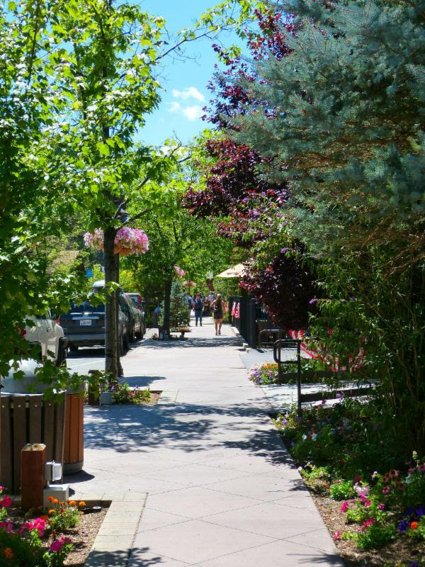 Spruce Up for Spring with The City of Big Bear Lake