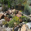 Xeriscape Garden Tour This Weekend Celebrates 10 Years